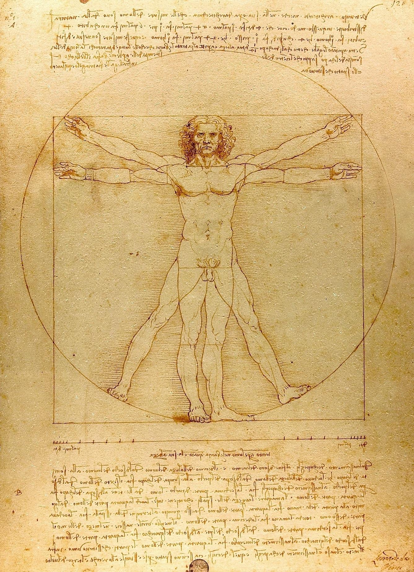 golden ratio da vinci vitruvian man